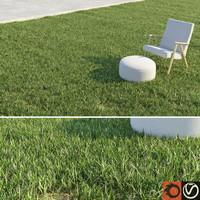 grass lawn obj