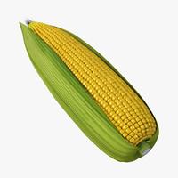 3d corn 2 model