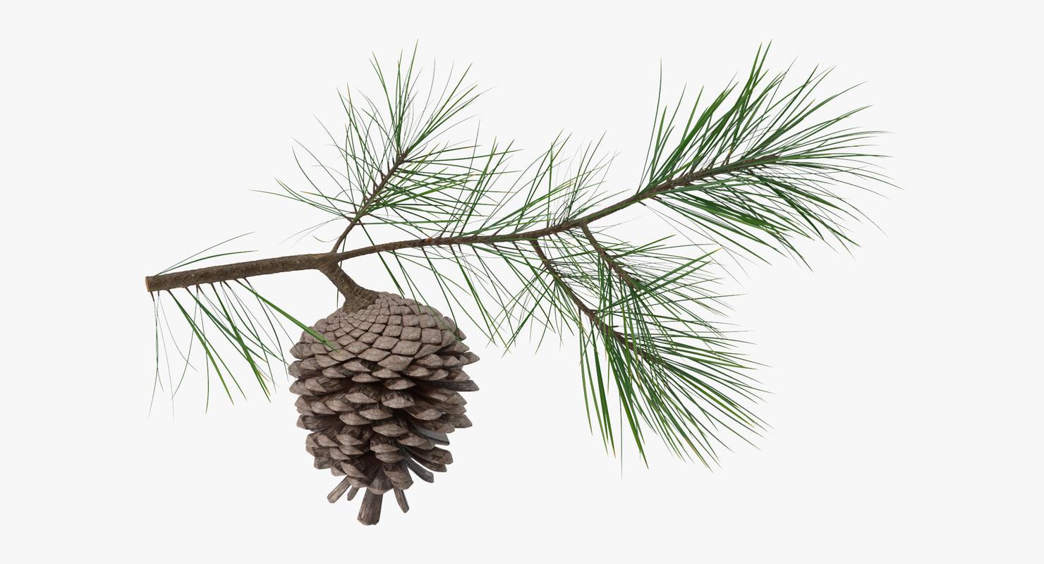 Pine_Tree_Springs_01_001_Thumbnail_0000.jpg