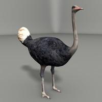 ostrich 3d 3ds