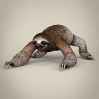 3ds realistic sloth