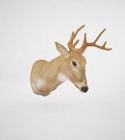 moose head 3d model
