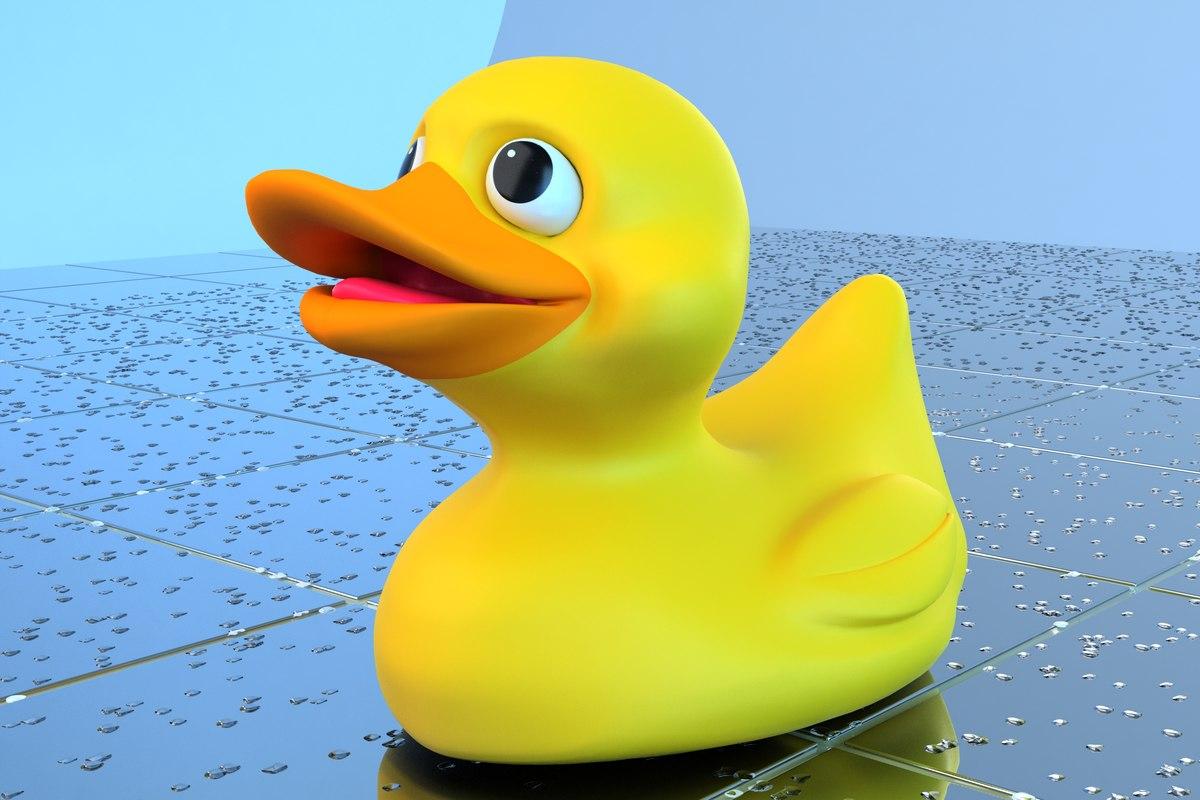 Duck 01.JPG