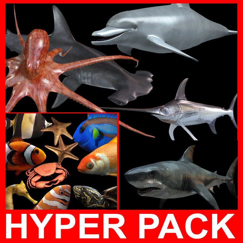 hyper_00.jpg