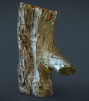 realistic wood log fbx