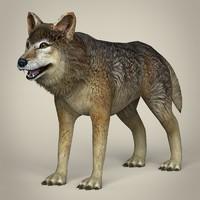 realistic wolf fbx