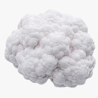 cauliflower photorealistic scaned 3d model