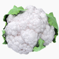 cauliflower leaves 3d max