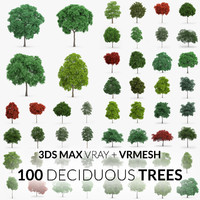 Deciduous Trees Collection - 100 Trees - V-Ray + VRMESH