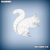 Squireel base mesh