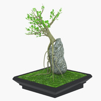 free bonsai rock 3d model