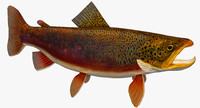 3ds trout brown