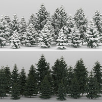 3d max 20 picea glauca trees