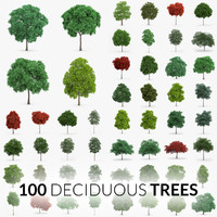 100 trees - max