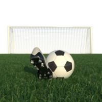 realistic football scene