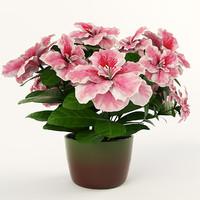 vase flowers azalea 3d max