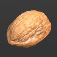 english walnut 3d model