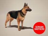 max dog german shepherd