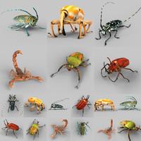 insect calloplophora sollii obj