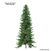 3d model fir-tree tree