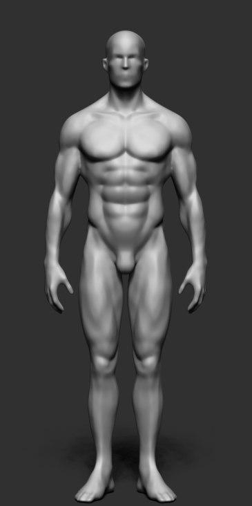 male_body_form01.jpg