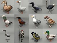 birds 12 3d 3ds