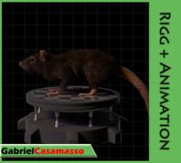3d rat rattus animation model