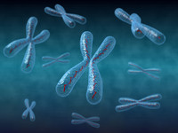render chromosome 3d max