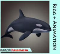 3d model orca animation