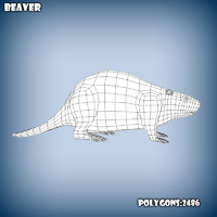 base mesh beaver 3d c4d