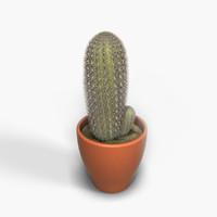 3d cactus design model