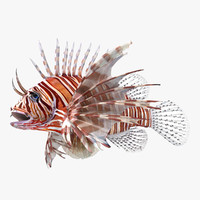 3d lion fish rigged