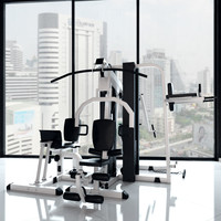 multistantsiya exercise machine 3d max