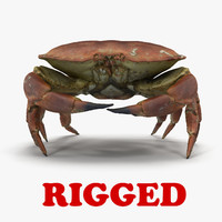 3d rigged crab model