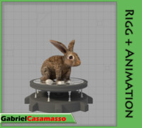 rabbit lepus sylvaticus fbx