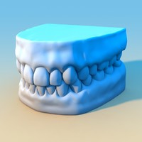 gums teeth 3d fbx