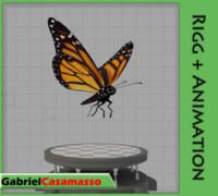 monarch butterfly blend
