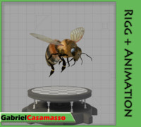 3d bee wings animation model