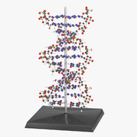 dna animation 3d 3ds