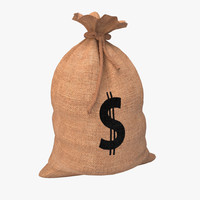 3d money bag