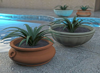 Outdoor Tuscan Planter Pot and Plant