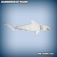 3d model of base mesh hammerhead shark