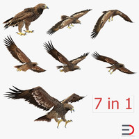 3ds imperial eagle