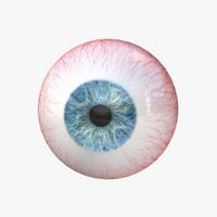 3d human eye model