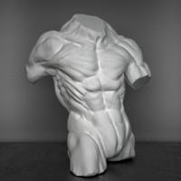 3d decorative bust man model