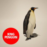 penguin king 3d obj