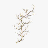 gold twig branch wall 3d max