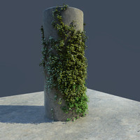 free ivy scene 3d model