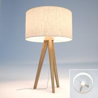 3d model tripod ash table