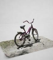 max bicycle girl